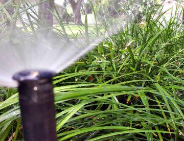 Lawn Sprinkler Repair Services Today