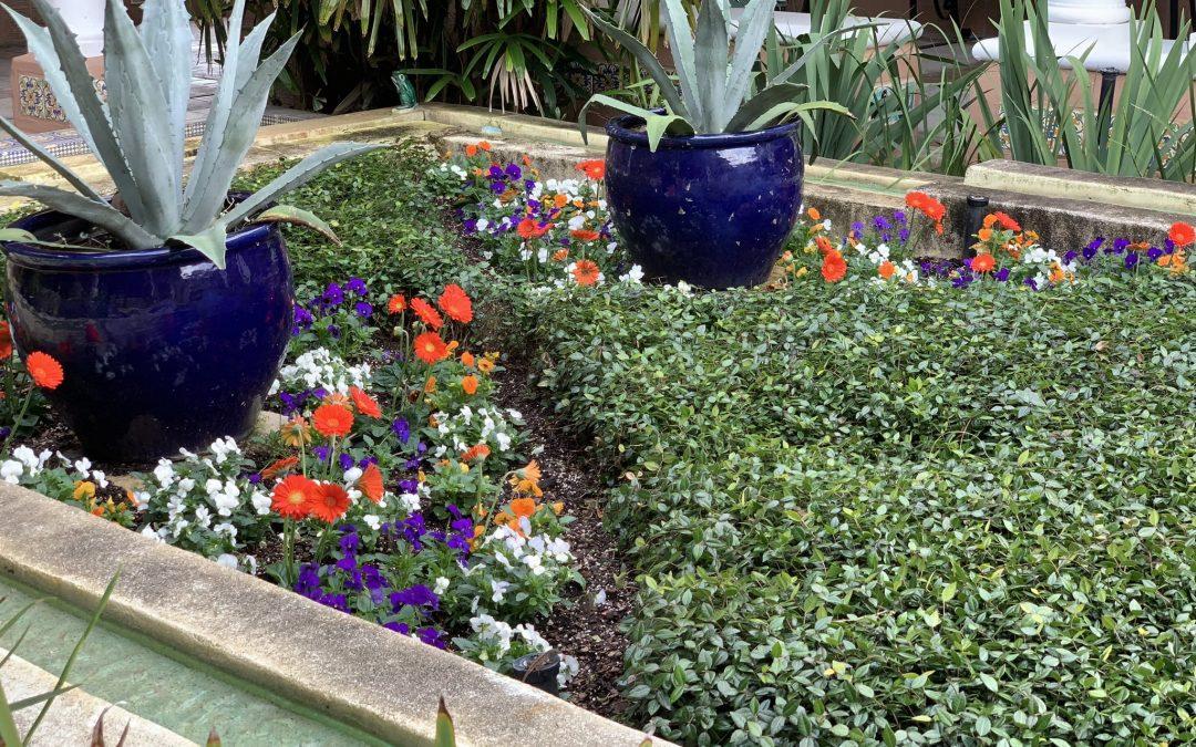 Importance of Sprinkler Irrigation Systems