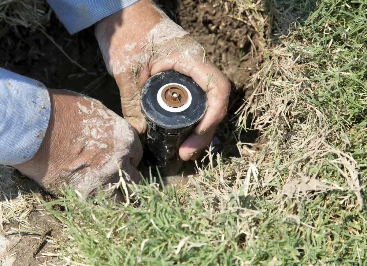 Tampa Sprinkler Head Replacement
